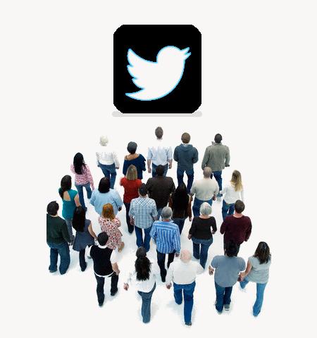 Twitter desarroladores