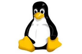 Linux el OS mas usado en Internet