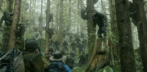 Reseña El Planeta de los Simios Confrontacion Dawn of the Planet of the Apes
