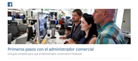 Business Manager Español