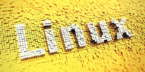 25 Años de Linux